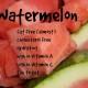 watermeloninfo